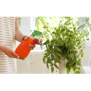 Bình xịt tưới cây cà rốt  KCK6810-PT0030-450ml
